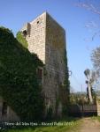 torre-del-mas-fina-100417_503