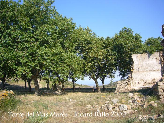 torre-del-mas-mares-roses-090729_517