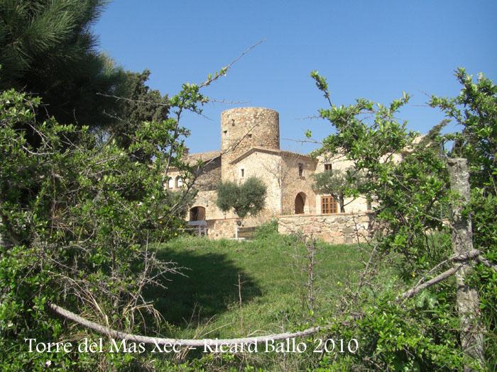 torre-del-mas-xec-palamos-100410_511
