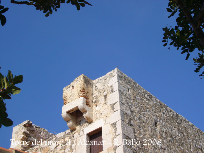 torre-del-moro-ii-alcanar-080208_508