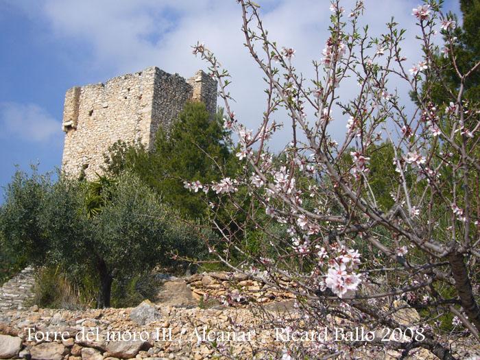 torre-del-moro-iii-alcanar-080208_525