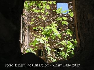 Torre del telègraf de Can Dolcet - Interior de la torre, presa per la vegetació.