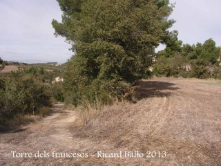 Ruta dels francesos - Part final - Cal caminar pel voral esquerra del camp. A l'esquerra de la fotografia es veu el camí per on hi hem accedit.