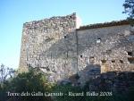 torre-dels-galls-carnuts-el-pla-de-manlleu-110505_002
