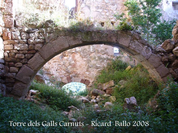 torre-dels-galls-carnuts-el-pla-de-manlleu-110505_004