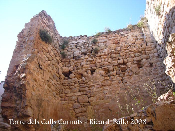 torre-dels-galls-carnuts-el-pla-de-manlleu-110505_006