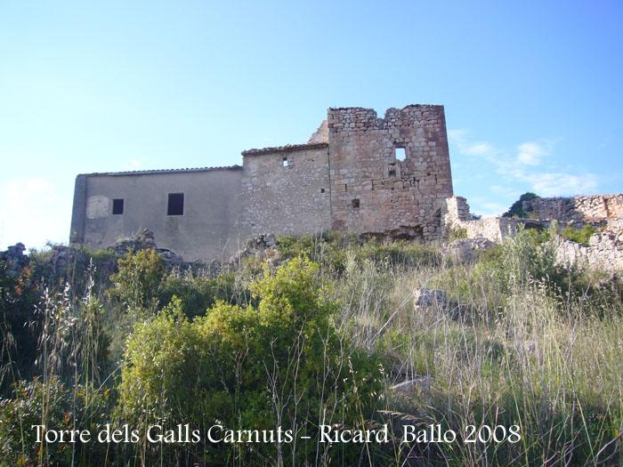 torre-dels-galls-carnuts-el-pla-de-manlleu-110505_016