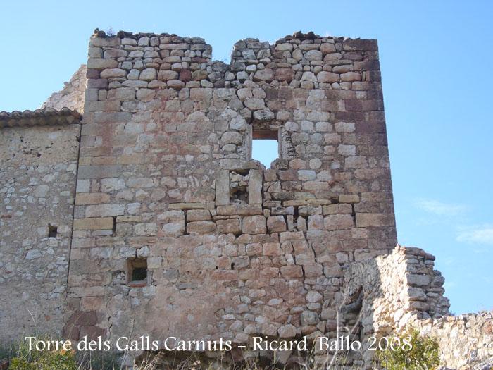 torre-dels-galls-carnuts-el-pla-de-manlleu-110505_020