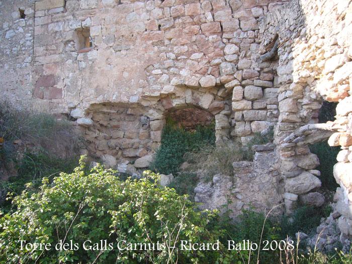 torre-dels-galls-carnuts-el-pla-de-manlleu-110505_023