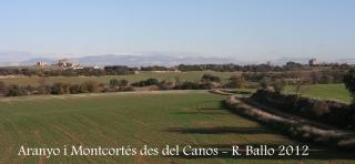 Vistes des del Canós: A la llunyania, a l'esquerra el castell de l'Aranyó, a la dreta el castell de Montcortès.