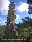 torre-dels-moros-arboli-101118_520bis
