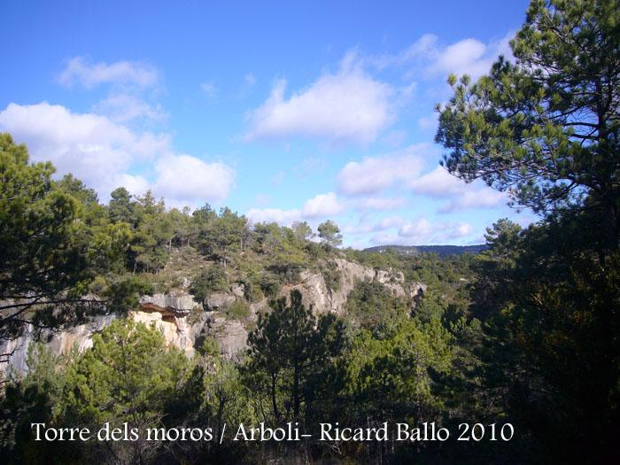 torre-dels-moros-arboli-101118_502