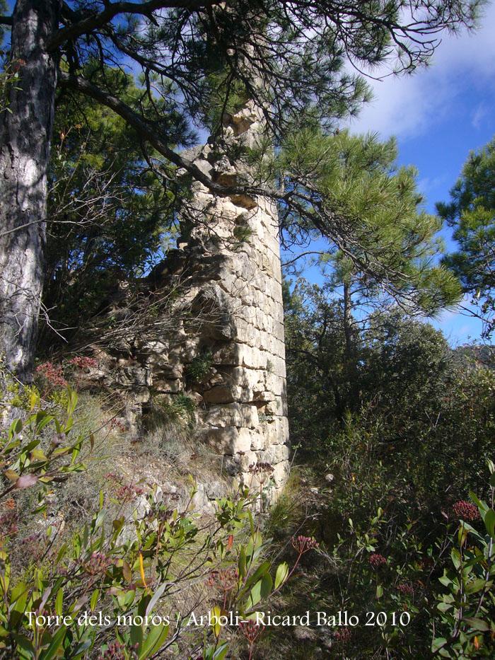 torre-dels-moros-arboli-101118_522
