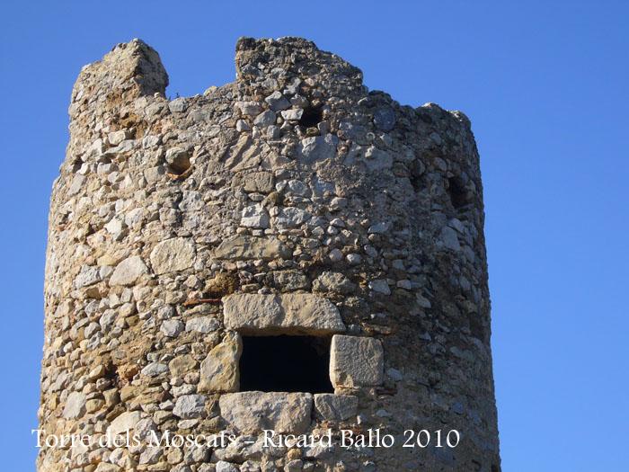 torre-dels-moscats-100220_508