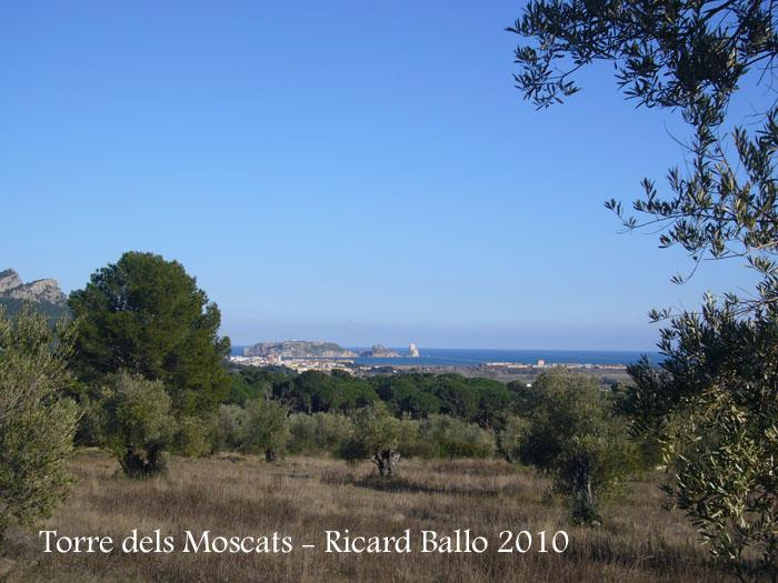 torre-dels-moscats-100220_524