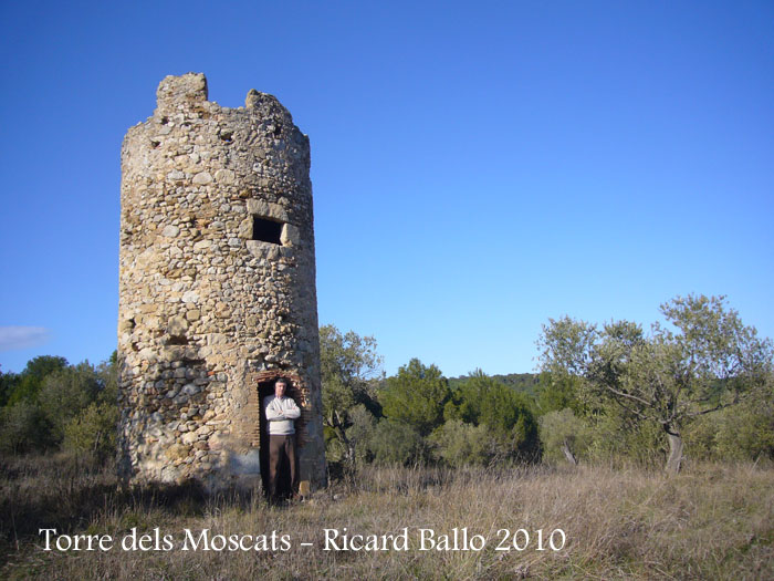 torre-dels-moscats-100220_525