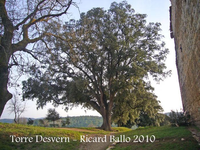 torre-desvern-100116_529bisblog