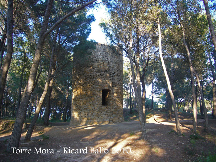 torre-mora-pals-100522_503bisblog
