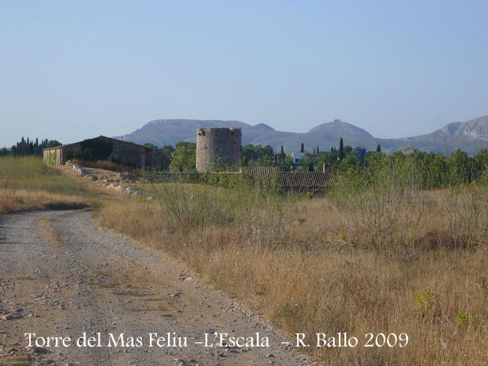 torre-del-mas-feliu-lescala-090801_501