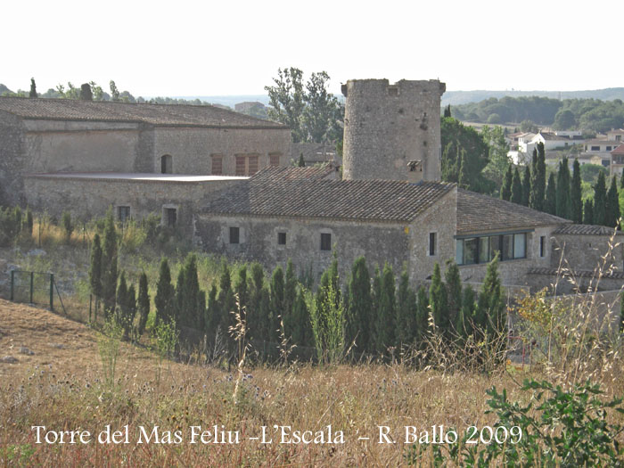 torre-del-mas-feliu-lescala-090801_705bis