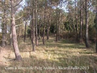 Torres de Puig Ardina – Riudarenes - Clariana.
