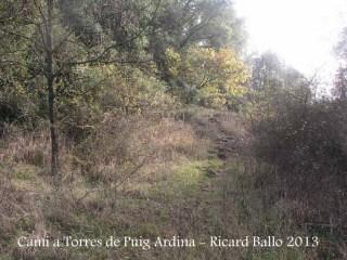 Torres de Puig Ardina – Riudarenes - Inici corriol.