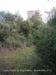 Torres de Puig Ardina – Riudarenes - Final corriol.