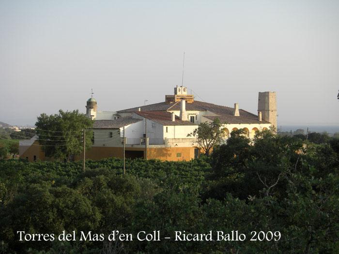 mas-den-coll-roses-090729_703