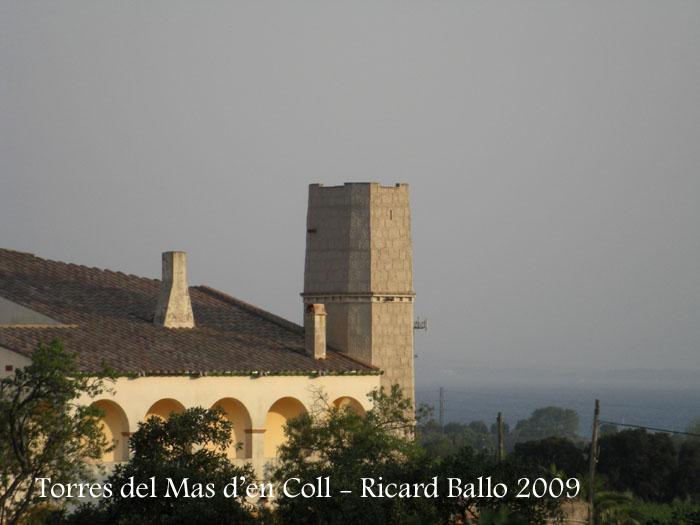mas-den-coll-roses-090729_705