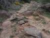 Via romana – La Vall de Bianya